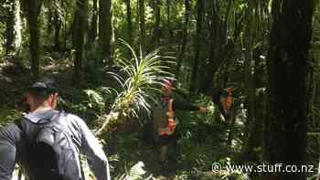Council working through hurdles for two key Taranaki walking and cycling trails - Stuff.co.nz
