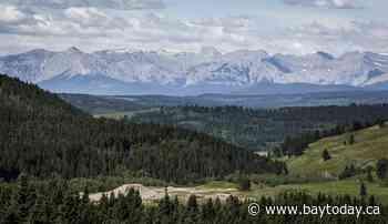 Panel says Grassy Mountain coal mine in Alberta Rockies not in public interest