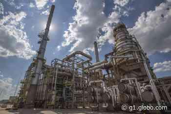 Petrobras seleciona projetos socioambientais em Paulínia e Cosmópolis - G1