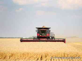 How long will commodity prices continue their upswing? - Leduc Representative