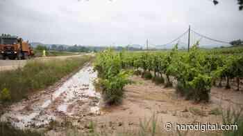 """Gamarra pide que se declare La Rioja como zona """"gravemente afectada"""" por las tormentas - Haro Digital"""