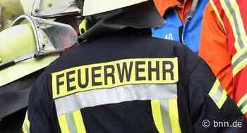 Mehrere Gartenhütten in Straubenhardt durch Brand beschädigt - BNN - Badische Neueste Nachrichten