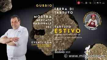 Il tartufo estivo ti aspetta a Gubbio - MilanoToday.it