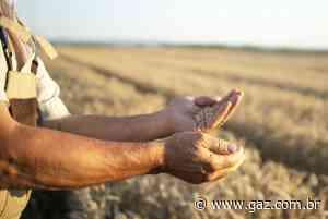 Pra ti, produtor rural! – GAZ – Notícias de Santa Cruz do Sul e Região - GAZ