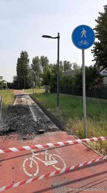 Mirandola, in corso lavori di manutenzione sulla ciclabile nei pressi del municipio - SulPanaro