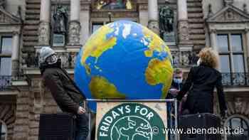 Umwelt: Fridays for Future will in Hamburg demonstrieren