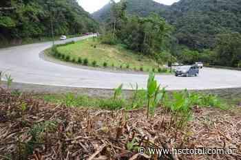 Estado contrata projeto para revitalizar estrada da serra Dona Francisca, em Joinville - NSC Total