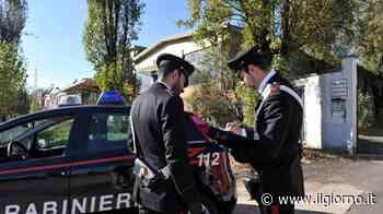 Paderno Dugnano, 14enne sviene al parco ubriaca - Cronaca - ilgiorno.it - IL GIORNO