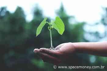 Fundo ESG da Ouro Preto Investimentos investirá em tecnologia de eficiência energética - SpaceMoney