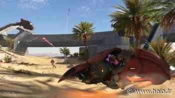 Halo Infinite – Nouveaux visuels des cartes, armes et véhicules - Halo.fr