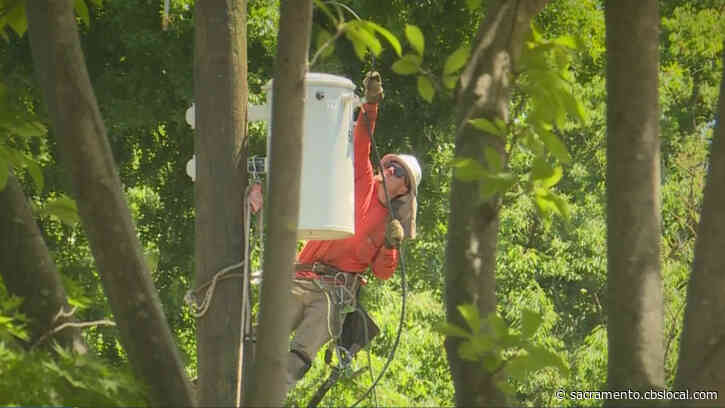 East Sacramento Neighborhood Power Turned Off For Maintenance Despite Hot Day