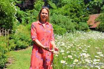 """Domein Bijsterveld zwaait na drie jaar de tuinpoorten nog eens open: """"We hebben de natuur tijd willen geven"""""""