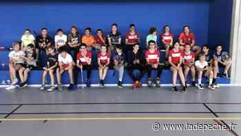 Villefranche-de-Lauragais. Badminton : la Plume retrouve le gymnase - ladepeche.fr
