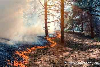 Two new forest fires in the North Bay region - BayToday.ca
