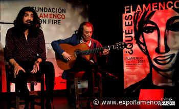 Pamplona: ciudad flamenca - Expoflamenco - ExpoFlamenco