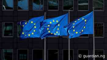 EU commits €11m to food security in Kebbi, Adamawa - Guardian
