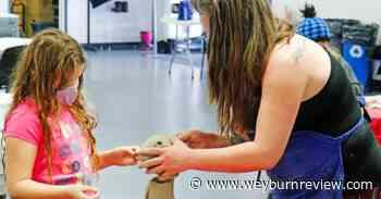 Few spots left available for Summer Art Program - Weyburn Review