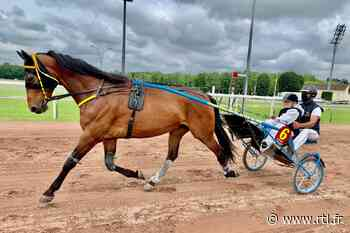 Puy-de-Dôme : le baptême à cheval de course des résidents de l'Ehpad Les Campellis - RTL.fr