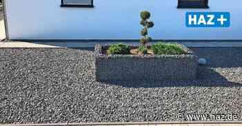 Steine statt Pflanzen? Das sagt die Stadt Springe zu den Steinwüsten vor der Haustür - Hannoversche Allgemeine