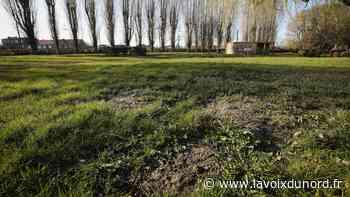 Quel intérêt pour Libercourt de devenir une « petite ville de demain » ? - La Voix du Nord
