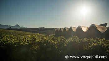 Ysios Finca El Nogal, la expresión más singular del terroir de Rioja Alavesa - Vozpópuli