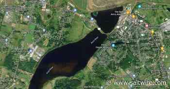 Nova Scotia officials investigating suspected blue-green algae near Windsor   Saltwire - SaltWire Network