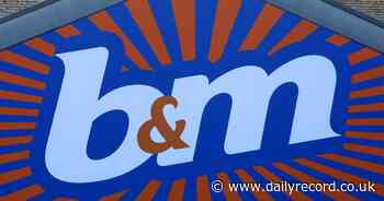 B&M bid for Stirling retail park store sparks concerns over impact on city centre - Daily Record