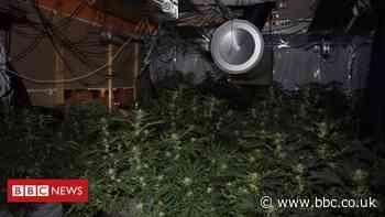 Cannabis worth £1m found in Blackpool Central Club