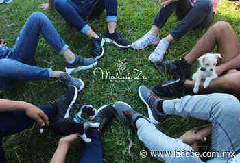 Jóvenes de la Sierra Nororiental del Estado de Puebla lanzan marca de zapatos artesanales - Lado B