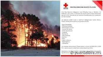 Apoyo a combate contra incendios de la Sierra; aquí centros de acopio - Puente Libre La Noticia Digital