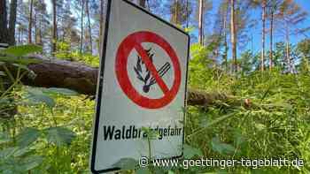 Heiße und trockene Tage: Waldbrandgefahr in Deutschland sehr hoch