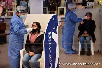 """Coronavirus en Tucumán: """"El Hospital Padilla está en una situación crítica"""" - La Gaceta Tucumán"""
