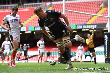 Hill released as Screech gets Wales call - Welsh Rugby Union