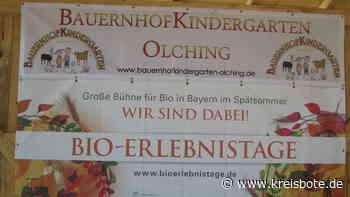 Wo Kinder Kühe melken: Bauernhofkindergarten Olching für Bio-Erlebnistage ausgezeichnet - Kreisbote