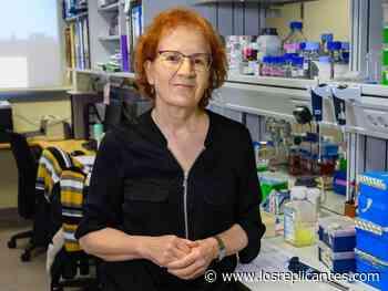 """Margarita del Val: """"Hemos aprendido a no confiarnos, este virus puede atacar de nuevo"""" - Los Replicantes"""