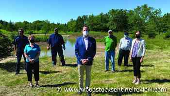 Funding helps establish 60 wetlands across Ontario - Woodstock Sentinel Review
