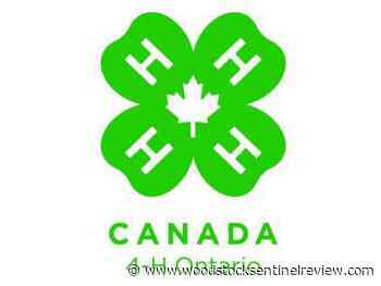 Ontario and Canada support 4-H - Woodstock Sentinel Review