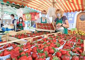 Endlich Erdbeeren aus heimischem Anbau: Was das für den Preis bedeutet - Winnenden - Zeitungsverlag Waiblingen