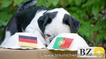 Schlechte Nachrichten: Wilma sieht Portugal vorn