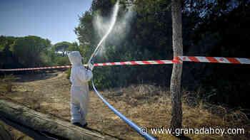 Esta es la zona de la provincia de Granada incluida en el programa de vigilancia y control del virus del Nilo - Granada Hoy