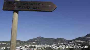 Cribados masivos de coronavirus en el distrito de Granada capital - Granada Hoy