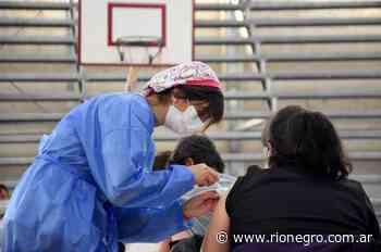 Cipolletti modificó el sistema de vacunación y logró bajar el nivel de ausentismo - Diario Río Negro
