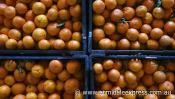 SA seasonal workers clear virus quarantine - Armidale Express