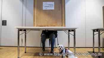 Bundestagswahl 2021: So wird man Wahlhelfer oder -helferin