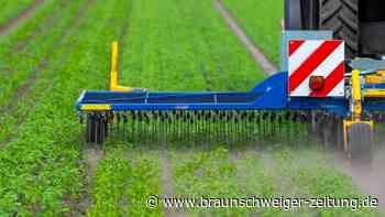 Deutlich mehr Öko-Bauern in Deutschland