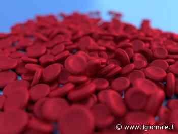 Come riconoscere l'anemia
