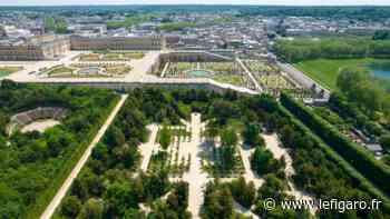 À Versailles, le bosquet de la Reine et sa «richesse végétale unique» retrouvent les promeneurs - Le Figaro