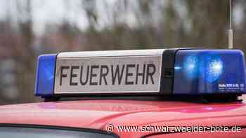 Aufregung in Villingen-Schwenningen - Zweijähriger büxt Eltern aus und landet auf Dach - Schwarzwälder Bote