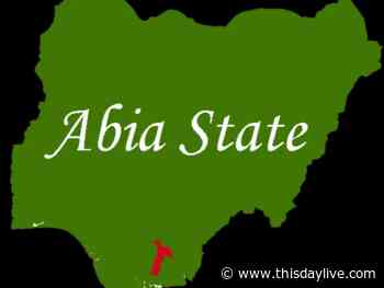 Monarchs Decry Harassment, Intimidation of Residents by Security Agents in Abia Community - THISDAY Newspapers