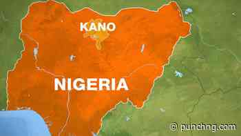 Newborn found in Kano well, teenager dies in pond - Punch Newspapers